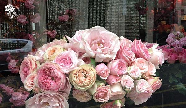 راهنمای خرید گل از گل باما