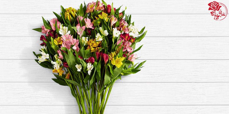 بهترین گلهای ولنتاین - گل لیلیوم