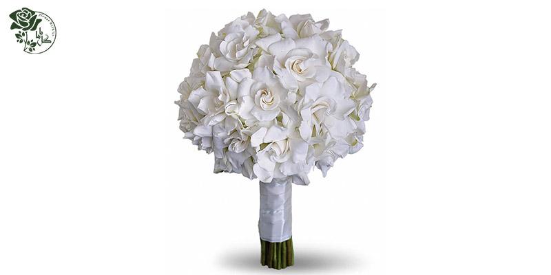 بهترین گل های ولنتاین - گل گاردنیا