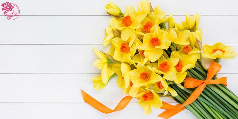 بهترین گلهای ولنتاین - نرگس