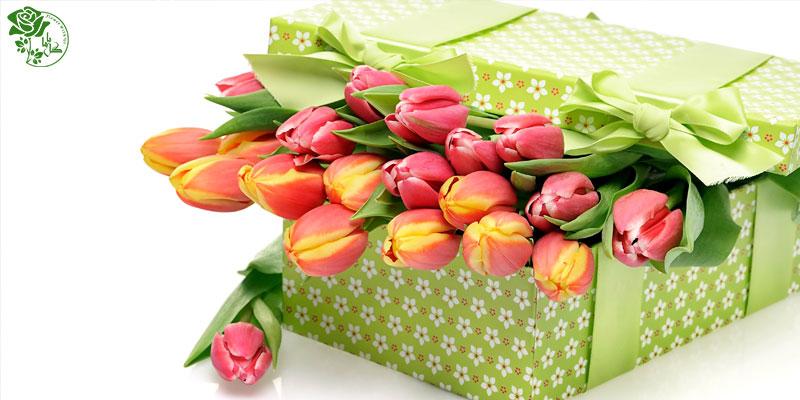 بهترین گل های ولنتاین - گل لاله