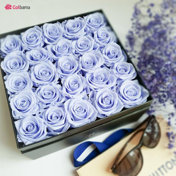 گل رز ولنتاین آبی