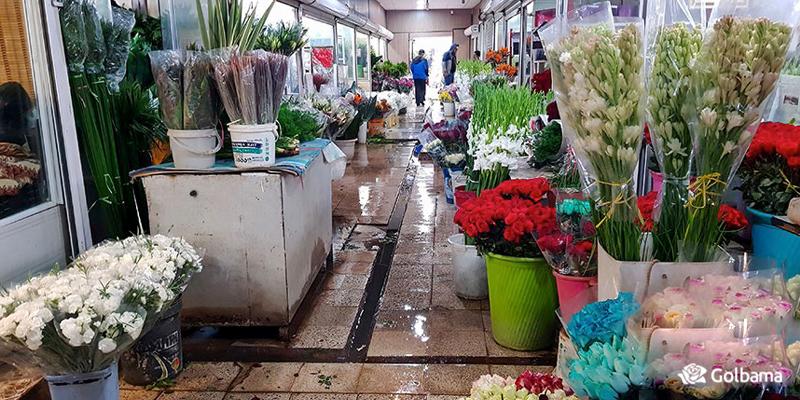 بزرگترین و رنگارنگ ترین بازارهای گل و گیاه در پایتخت
