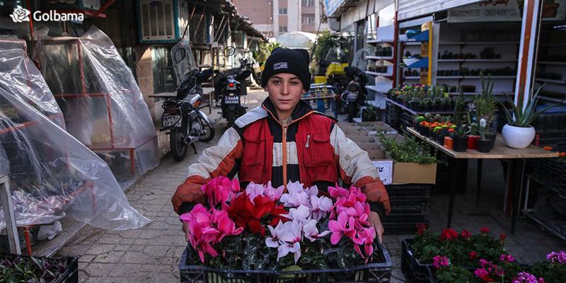 معرفی بازارهای گل بزرگ شهر تهران