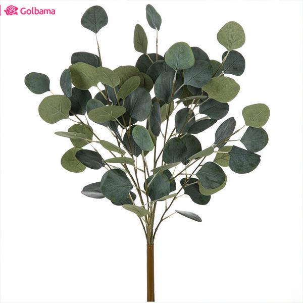 گیاهان آپارتمانی معطر: 9. گیاه اوکالیپتوس نیلی (Tasmanian Blue Gum)