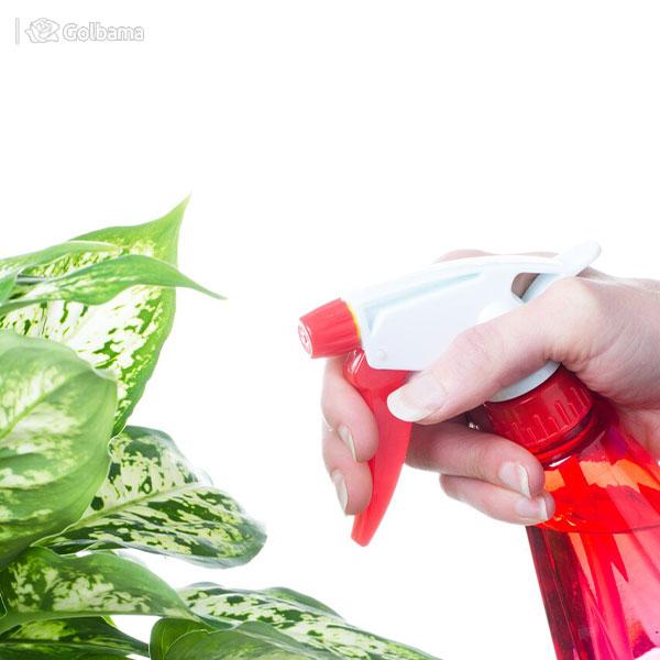 استفاده از خاک دیاتومه به عنوان یکی از راههای از بین بردن هزارپا در گلدان